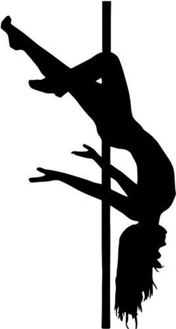 Stripper Pole Dancing 2