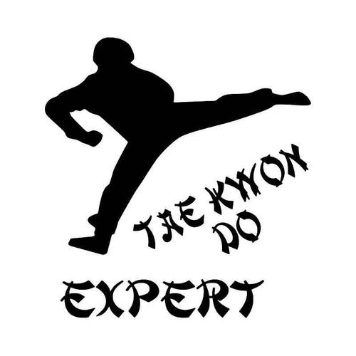 Tae Kwon Do Expert Vinyl Sticker