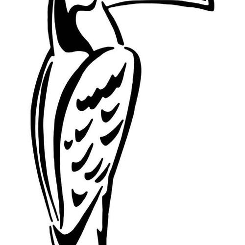 Toucan Bird 1 Vinyl Sticker