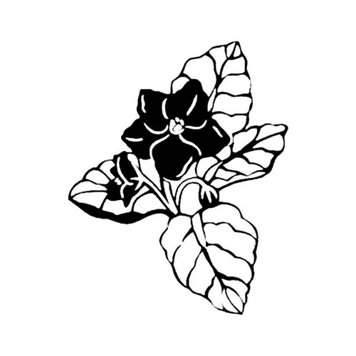 African Violet S Decal