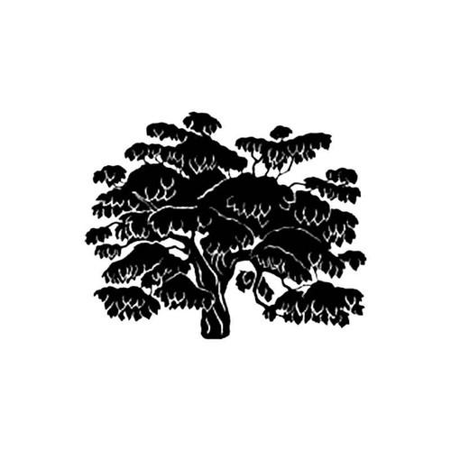 Bean Tree S Decal