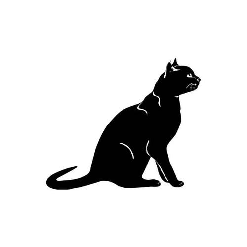 Bombay Cat S Decal