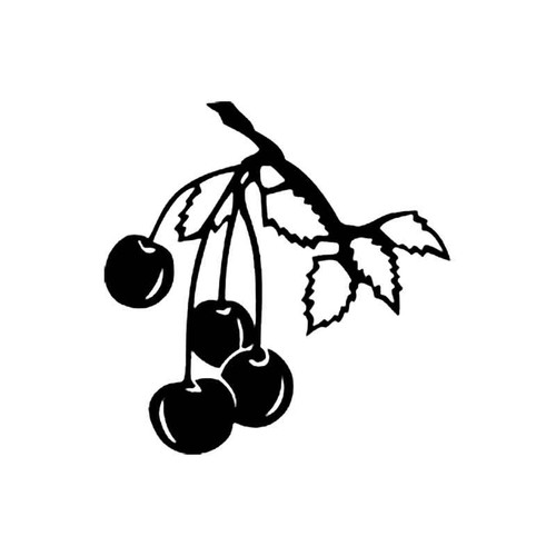 Cherries B S Decal
