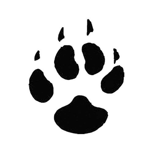 Coyote Paw Print Tracks S Decal