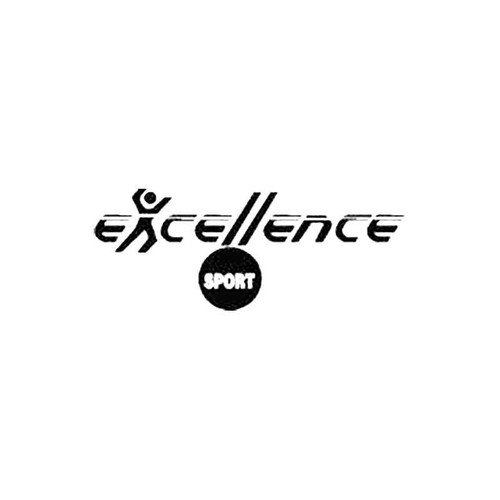 Excellence Sport S Decal