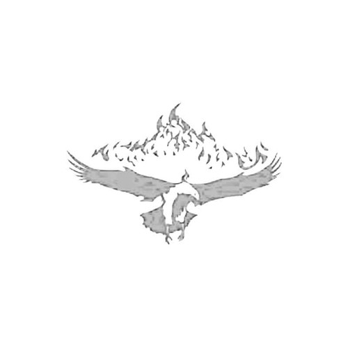Flaming Eagle S Decal