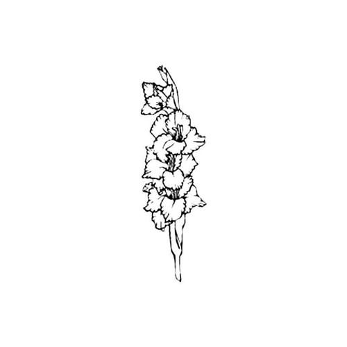 Gladiola S Decal