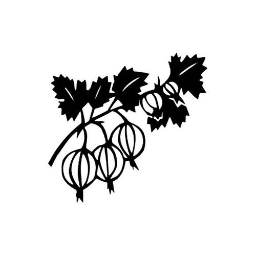 Gooseberries B S Decal