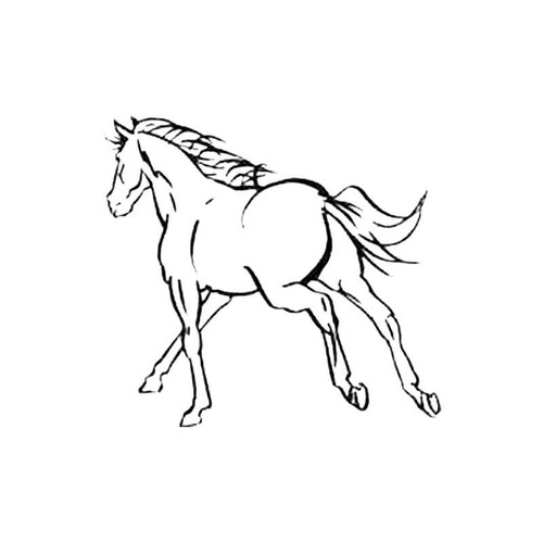 Horse Aa S Decal