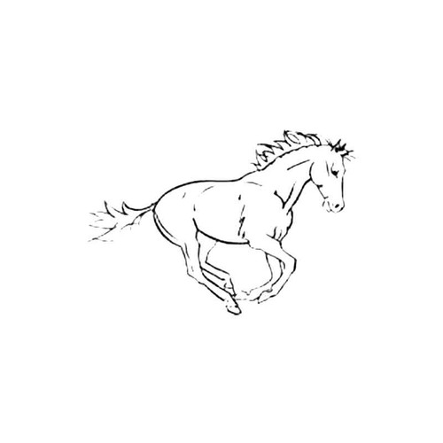 Horse Ab S Decal