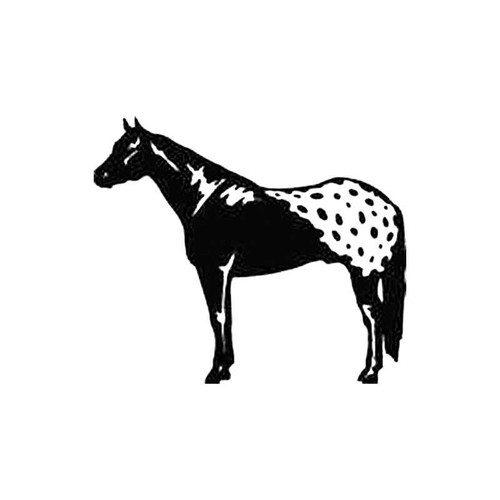 Horse C S Decal