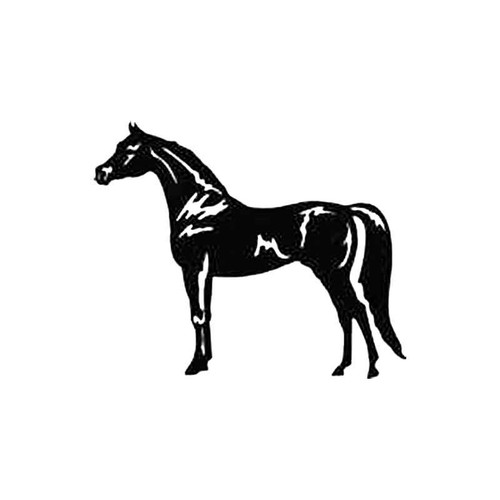 Horse D S Decal