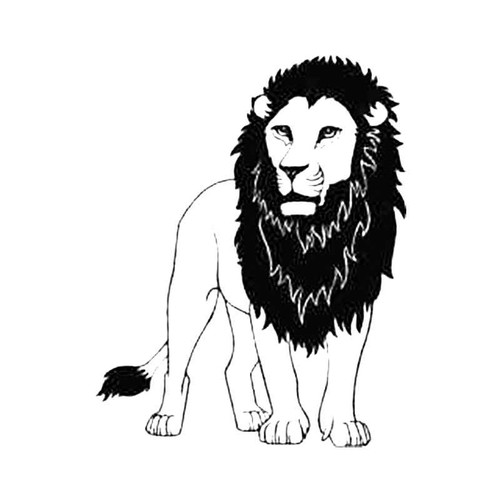 Lion2 Decal