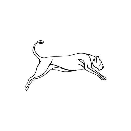 Lioness B S Decal