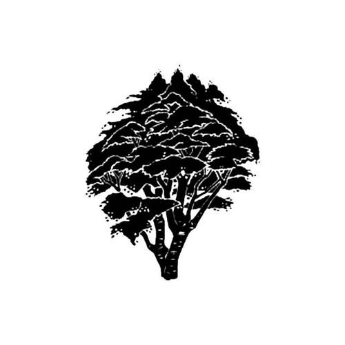 Maple Tree S Decal