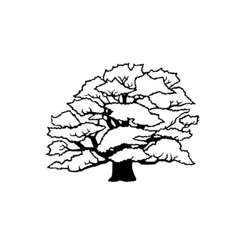 Oak Tree B S Decal