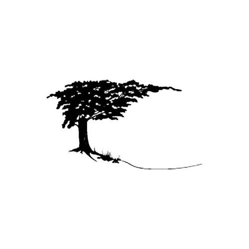 Oak Tree S Decal