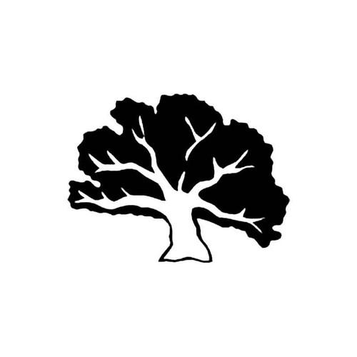 Oak Tree4 Decal