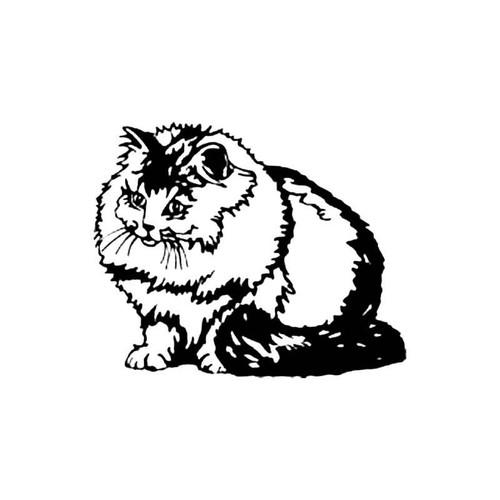 Persian Smoke Cat S Decal