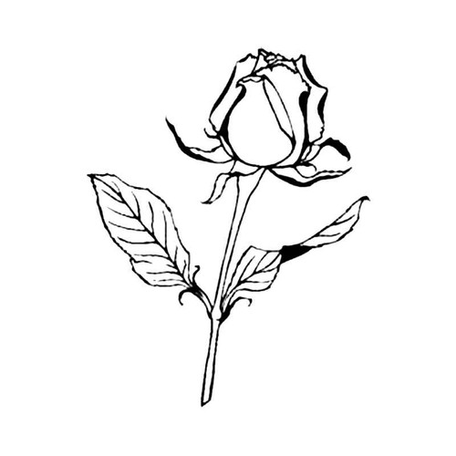 Rose S Decal