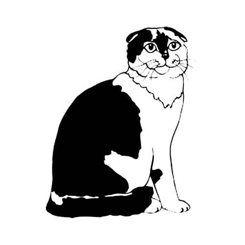 Scottish Fold Cat S Decal