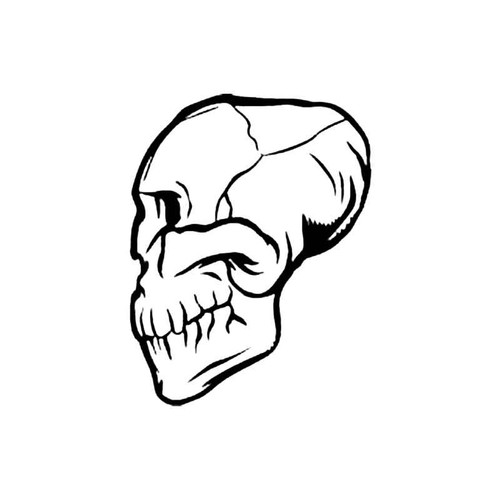 Skull Bq S Decal