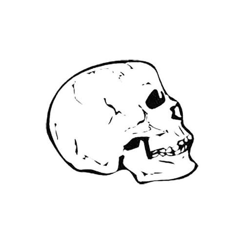 Skull S Decal