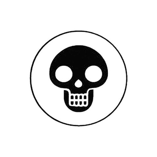 Skull H S Decal