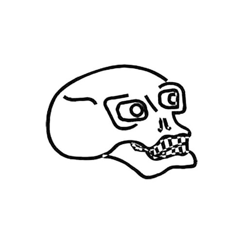 Skull W S Decal