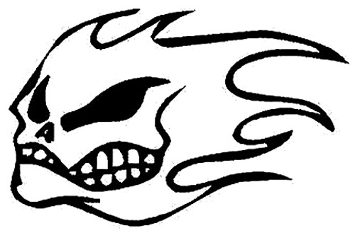 Skull With Flames Decal