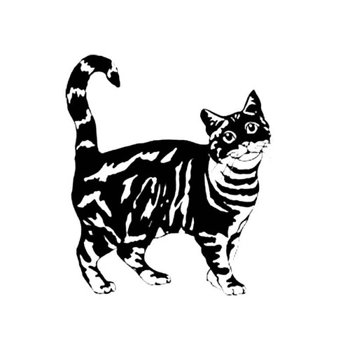 Tabby Cat S Decal