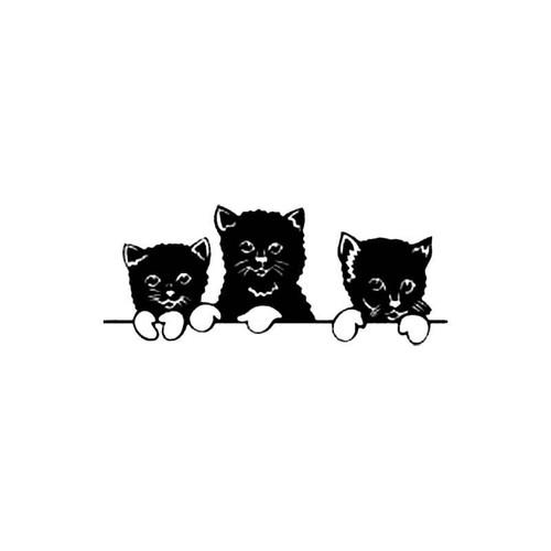 Three Kittens S Decal