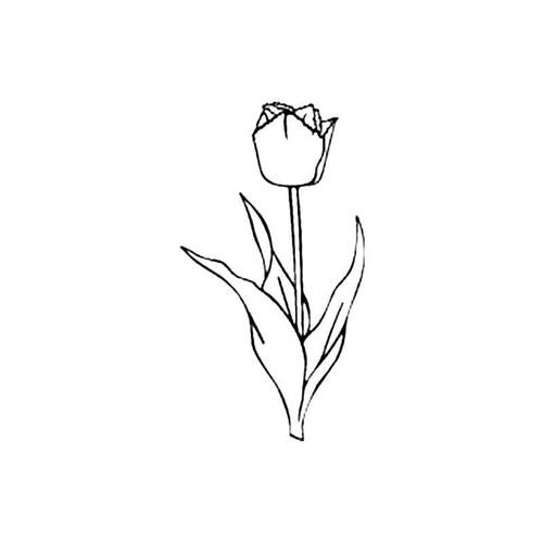 Tulip S Decal