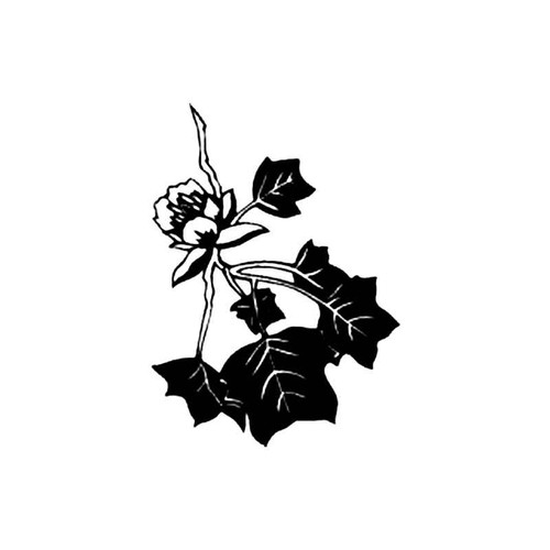 Tulip Tree Branch S Decal
