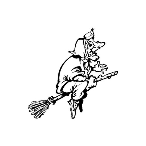 Witch On A Broomstick S Decal