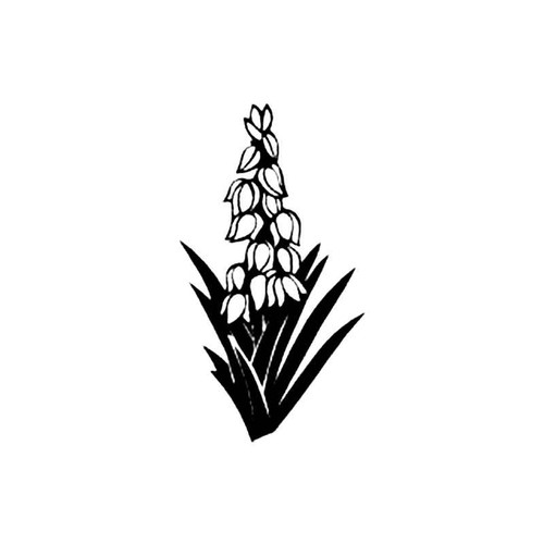 Yucca S Decal