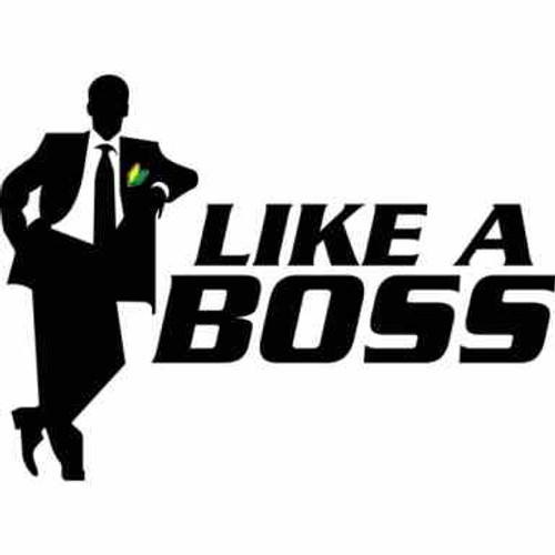 Like A Boss JDM Car Vinyl Sticker Decal  Size option will determine the size from the longest side Industry standard high performance calendared vinyl film Cut from Oracle 651 2.5 mil Outdoor durability is 7 years Glossy surface finish