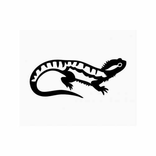 Iguana  Vinyl Decal Sticker  Size option will determine the size from the longest side Industry standard high performance calendared vinyl film Cut from Oracle 651 2.5 mil Outdoor durability is 7 years Glossy surface finish