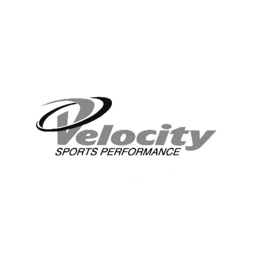 Velocity Performance Decals  Vinl Decal Car Graphics Made from only the best quality vinyl Glossy Outdoor lifespan 5 -7 years Indoor lifespan is much longer Easy application