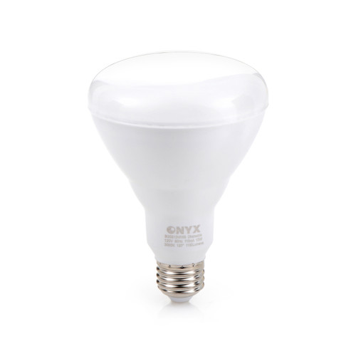 13 Watt BR30 size LED bulb