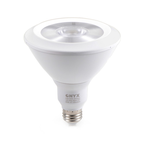 PAR38 LED light bulb front