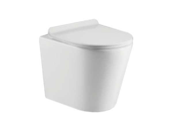Jeffrey LT Concealed S or P Trap Concealed Cistern Toilet (White Gloss) - 13849