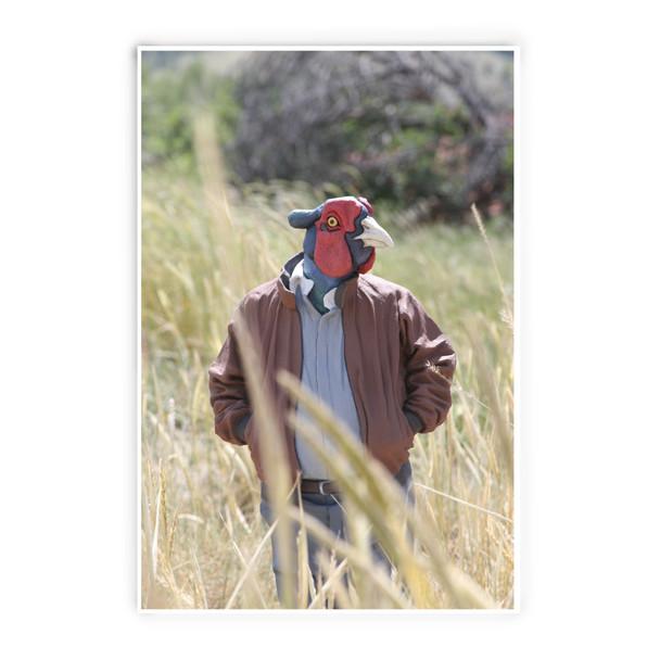 Alessandro Gallo - Pheasant