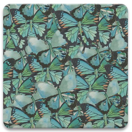 Amazing Butterflies II