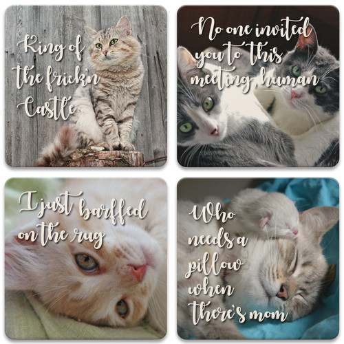 Cat Minds