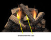 """Monessen SC24-R 24"""" Stony Creek Replacement Refractory Logs for 24"""" Natural Glaze Vent Free Burner (LOGS ONLY)"""