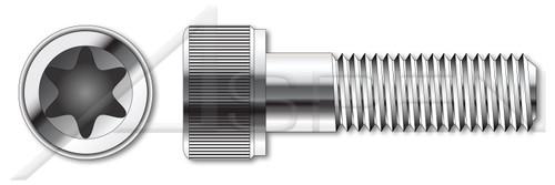 M2-0.4 X 6mm ISO 14579, Metric, 6Lobe Torx(r) Socket Cap Screws, A2 Stainless Steel