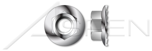#10-24 Hex Flange Nuts with Serrations, AISI 316 Stainless Steel