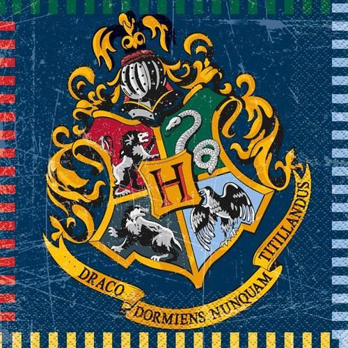 Harry Potter Large Napkins