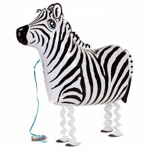 63cm Air Walking Zebra Balloon